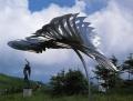 Kakadu Flight