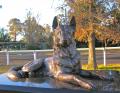 Police K9 Memorial, Tahmoor NSW