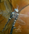 (Small) Dragonfly